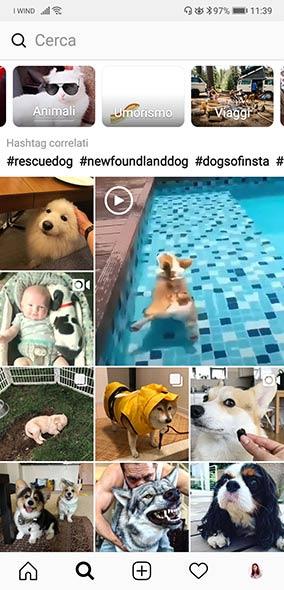 Pagina Esplora di Instagram